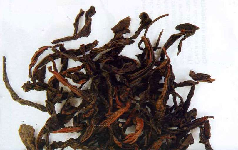 Чай Шуи-Цзинь Гуй