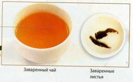 Чай Нарцисс северного Фуцзяня
